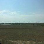 Saratov region steppe's the most fertile soil has hardy been used...