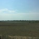 Saratovo regiono stepės labai derlingos, bet nedirbamos..
