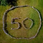 Neringai 50!