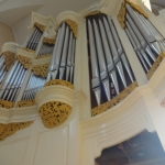 The Oberlinger Organ